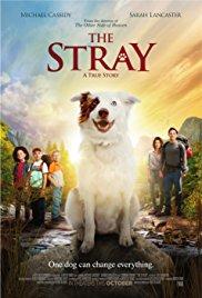 The Griya Movie Night - The Stray